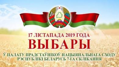 Картинки по запросу выборы 2019 беларусь